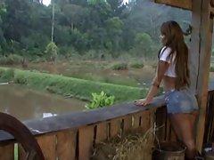 لب به لب برزیل در مرتع پرورش احشام
